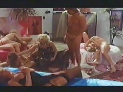 Vintage hot orgy party