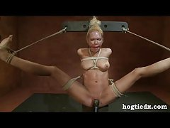 Hogtied chick gets vibrated