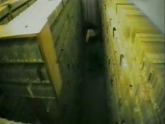 SECURITY CAMS 8
